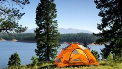 Photo of Which Are Health Benefits of Camping?