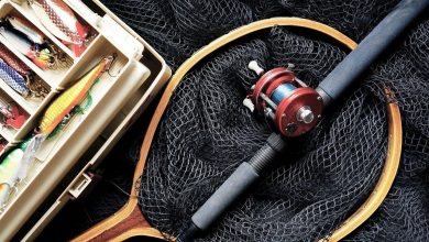 Photo of Top Fishing Products with Best Discounts | BLACK FRIDAY