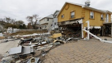 Photo of 6 Tips to Recover from Storm Damage