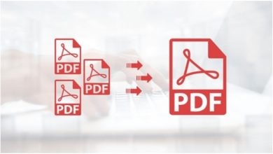 Photo of Split PDF Pages: Using PDFBear for Efficient PDF Management