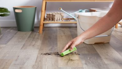 Photo of How to properly care for your laminate floors