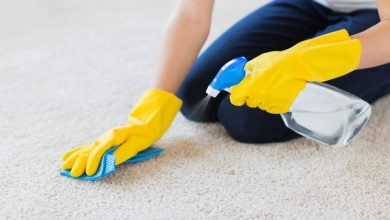 Photo of A Complete Guideline of How You Can Easily Clean Carpet & Remove Dirt