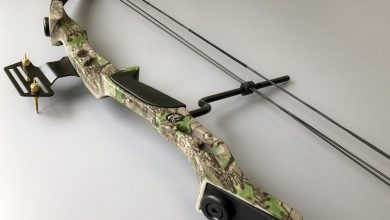Photo of Best Compound Hunting Bows