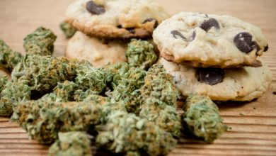 Photo of Things One Should Know About The Cooking Of Cannabis