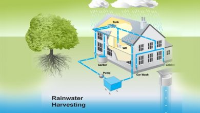 Photo of What is the Significance of Rainwater Harvesting?