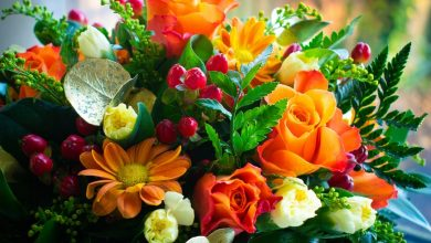 Photo of What to Look For in Mother's Day Flower Delivery