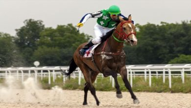 Photo of 6 Important Requirements To Be A Jockey