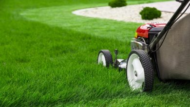 Photo of Get to Know About Choosing the Right Lawn Mower