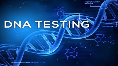 Photo of Is There Any Reliable DNA Testing Kit for Maternity? Find Out Here!