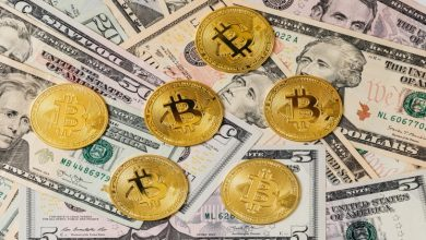Photo of Bitcoin, and Traditional Investment: Considering the Collapse Effects