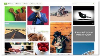 Photo of 15 Best Image Gallery Plugins For WordPress